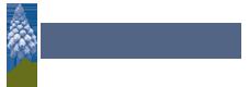 Blumenzwiebeln Beratung | Handelsgärtnerei Jolanda van Amerom | Ostingersleben Logo